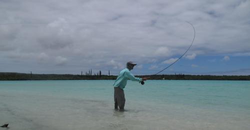 histoire de pêche, énorme bonefish à la mouche, bonefish de nouvelle calédonie, beonfish trophée, gros bonefish, jean-baptiste vidal moniteur-guide de pêche,enjoy fishing