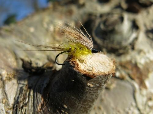 mouche de mai, truite à la mouche, grosse truite bretonne, pêche à la mouche en Bretagne, Jean-Baptiste Vidal Moniteur-Guide de pêche, Enjoy Fishing