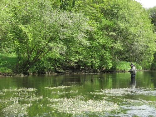 pêche en reservoir,réservoir mouche,pêche à la mouche en bretagne,guide de pêche en bretagne,réservoir parc er bihan,jean-baptiste vidal moniteur-guide de pêche,enjoy fishing