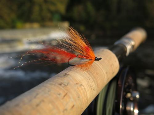 bilan de la saison migrateur en bretagne,bilan de la saison saumon,peche a la mouche des migrateurs,saumon,alose,truite de mer,peche du saumon en france,ellé,aulne,elorn,aven,enjoy fishing,jean baptiste vidal
