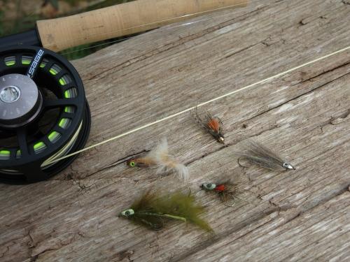 pêche à la mouche en bretagne,condition de pêche pour l'ouverture 2019,pêche de la truite en bretagne,pêche du saumon en bretagne,jean-baptiste vidal moniteur-guide de pêche,enjoy fishing