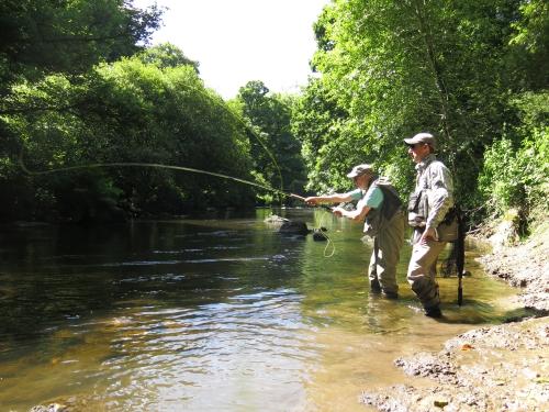 peche des migrateurs en bretagne,alose à la mouche,saumon à la mouche,jean-baptiste vidal guide de pêche à la mouche,enjoy fishing