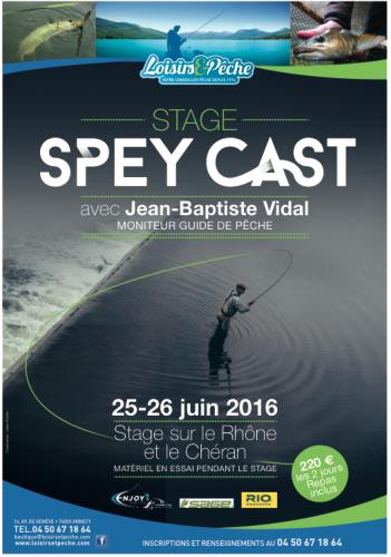 stage Spey Cast, Loisirs et Pêche Annecy, canne à deux mains, canne Switch, apprendre à utiliser une canne Spey, Jean-baptiste Vidal guide de pêche