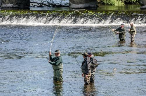 stage Spey Cast en Bretagne, Ardent Pêche, Jean-Baptiste Vidal guide de pêche en Bretagne, Spey Casting, Canne à deux mains, lancer Spey ou Scandinave