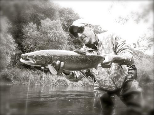 bilan peche des migrateurs en bretagne,report fin de saison saumon,compte rendu saison saumon bretagne,jean-baptiste vidal guide de peche à la mouche en bretagne,enjoy fishing