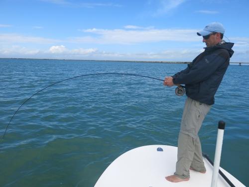 cuba,cayo santa maria,les jardins du roi,pêche du tarpon à la mouche,hosted trip jean-baptiste vidal guide de pêche,enjoy fishing
