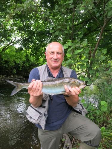 alose,saumon,saison estivale,castillon,peche du saumon en bretagne,alose à vue,enjoy fishing,jean-baptiste vidal