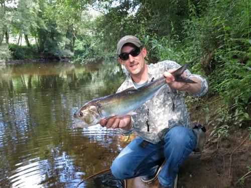 alsoe, saumon, saison estivale, castillon, peche du saumon en bretagne, alose à vue, enjoy fishing, jean-baptiste vidal