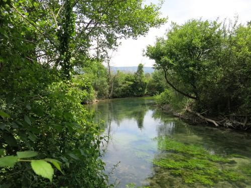 Sorgues Vauclusienne, ombres commun, pêche en nymphe à vue, enjoy fishing, jean baptiste vidal,