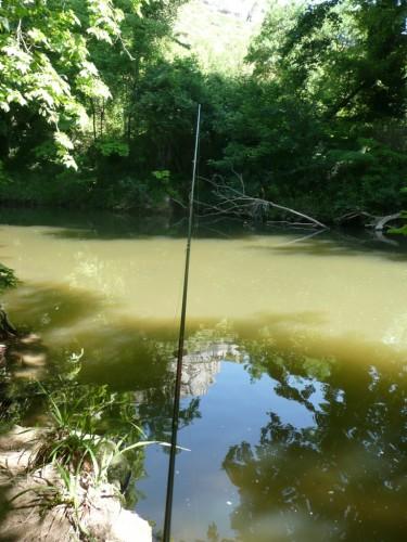 carpe à vue, carpe à la mouche, peche à vue, jean baptiste vidal, enjoy fishing, carpe