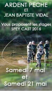 stage Spey cast Bretagne, Stage spey cast avec Ardent Pêche, stages d'initiation et de perfectionnement aux techniques modernes du Spey Cast, Jean-Baptiste Vidal guide de pêche